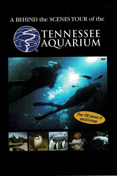 Tennessee Aquarium (2008)