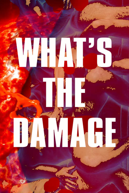 What's The Damage (2017)