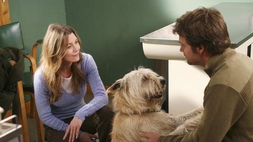 Grey's Anatomy - Season 2 - Episode 23: 19