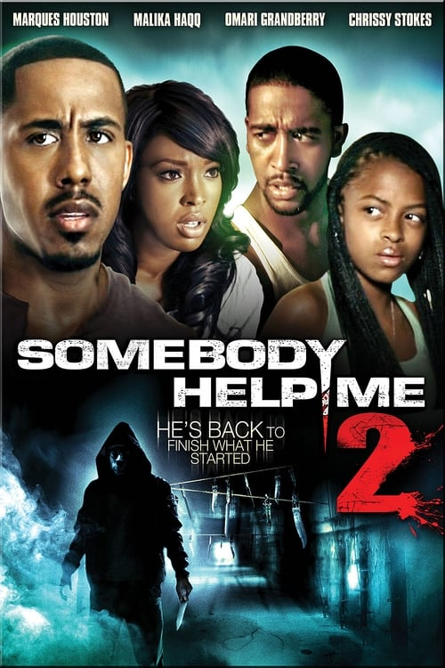 Somebody Help Me 2 (2010) Poster