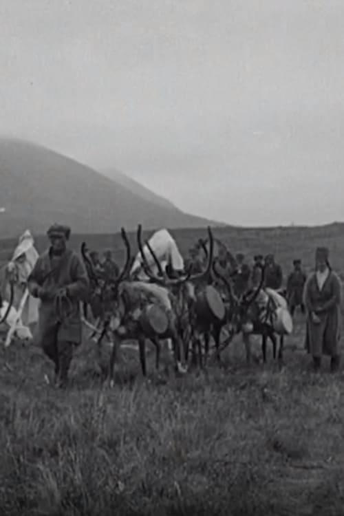 Mira La Película I fjällfolkets land : Dagar i Lappland Doblada En Español