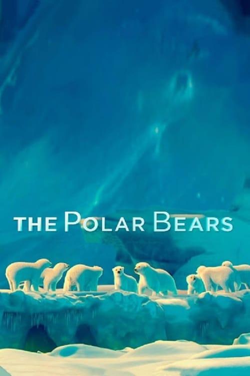 Filme The Polar Bears Em Boa Qualidade Hd 1080p