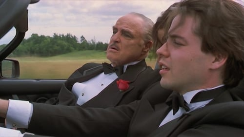 Un novato en la mafia (1990)