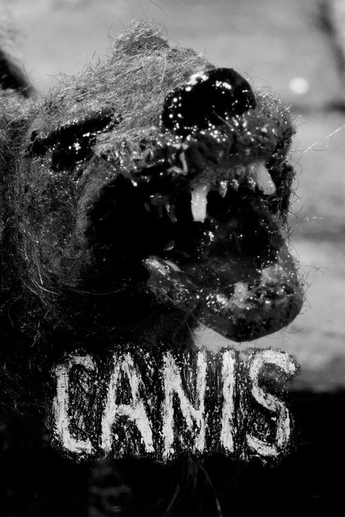 Assistir Filme Canis Em Boa Qualidade Hd