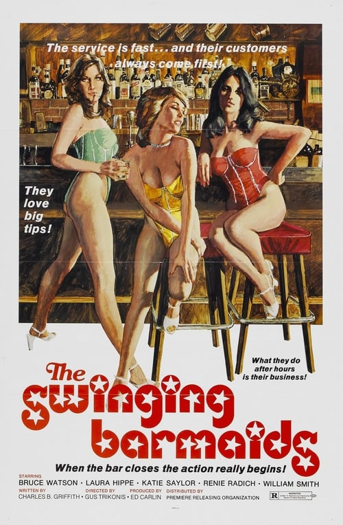 The Swinging Barmaids poster