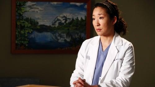 Grey's Anatomy - Season 8 - Episode 17: One Step Too Far