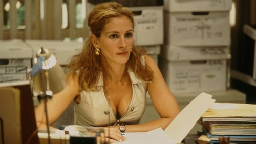 Subtitles Erin Brockovich (2000) in English Free Download | 720p BrRip x264