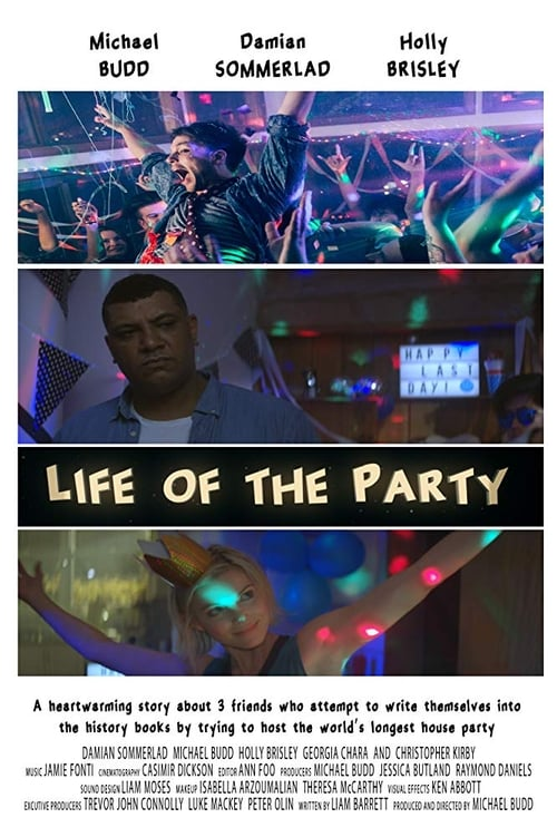 Life of the Party (2017)