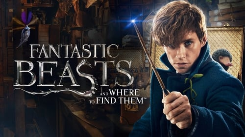 Fantastic Beasts and Where to Find Them - From J.K. Rowling's wizarding world. - Azwaad Movie Database
