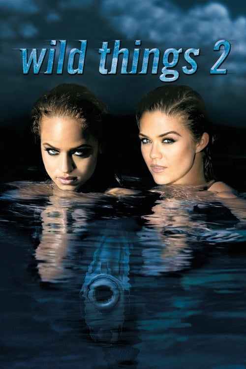 Wild Things 2 (2004) Poster