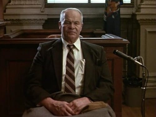 Law & Order: Season 1 – Épisode The Torrents Of Greed (2)