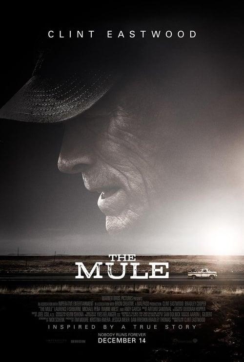 Regardez ஜ La Mule Film en Streaming HD