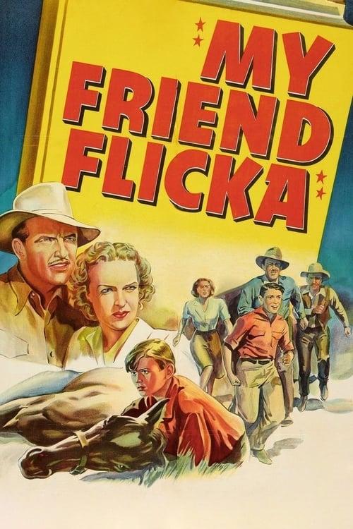 Película My Friend Flicka En Buena Calidad Hd 720p