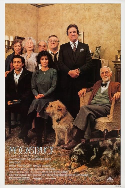Moonstruck ( Ay Çarpması )