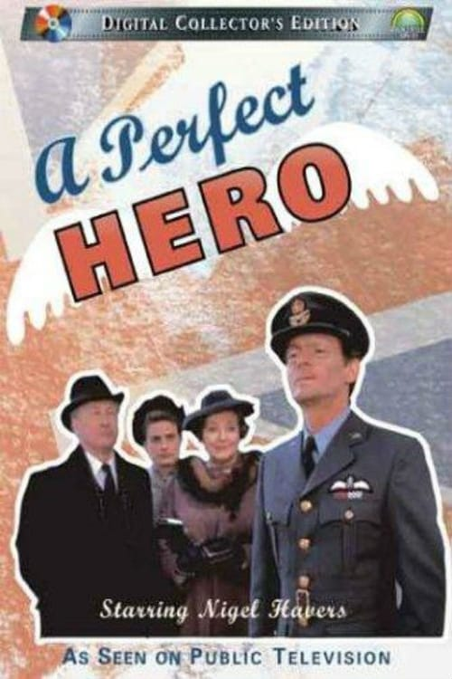 A Perfect Hero (1991)