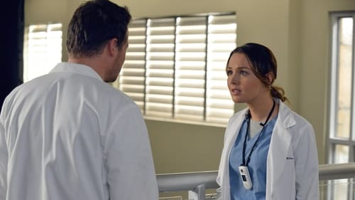 Grey's Anatomy - Season 10 - Episode 14: You've Got to Hide Your Love Away