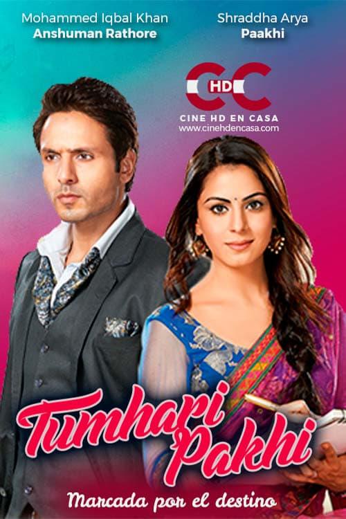 Tumhari Pakhi (2013)