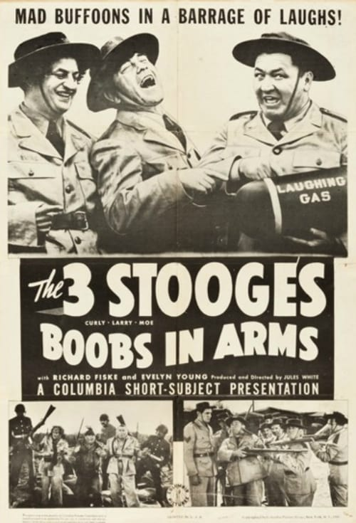 Ver pelicula Boobs in Arms Online