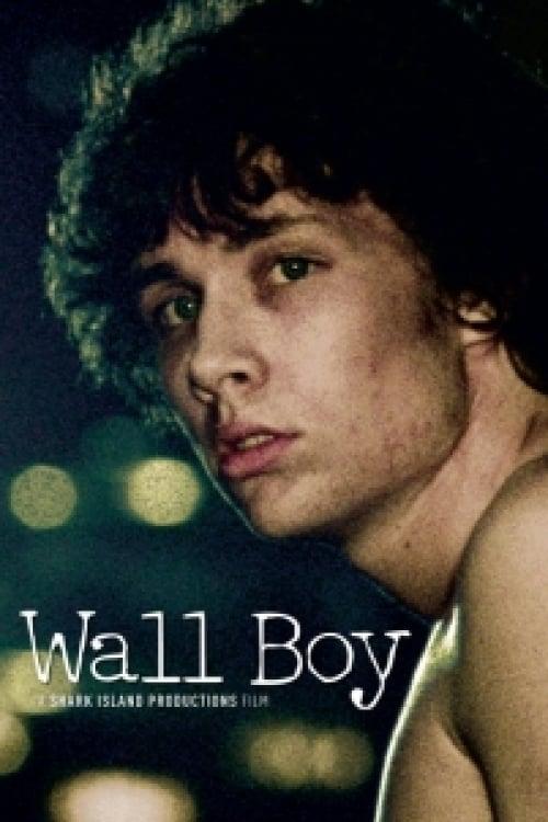 Wall Boy poster
