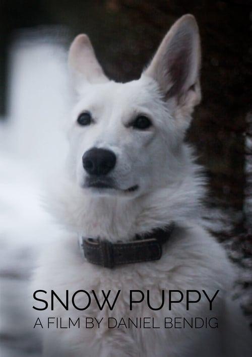 Snow Puppy (2018)