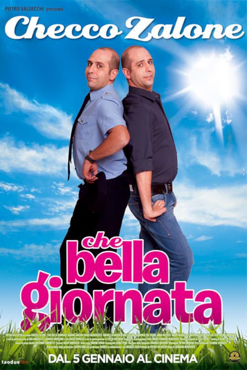 Che bella giornata (2011)