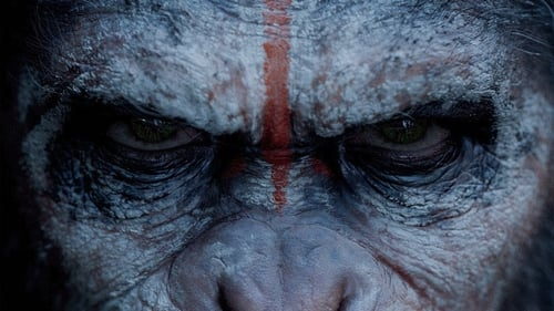 Dawn of the Planet of the Apes - One last chance for peace. - Azwaad Movie Database