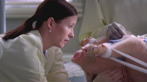 Grey's Anatomy: Season 5 – Episode Life During Wartime
