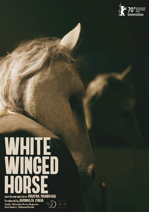 White Winged Horse