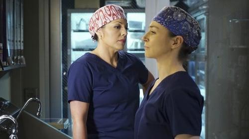 Grey's Anatomy - Season 11 - Episode 24: You're My Home