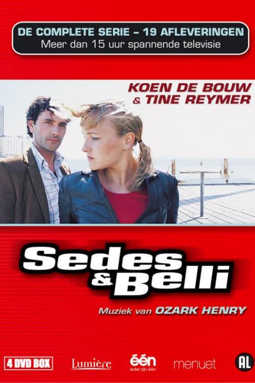 Sedes & Belli (2002)