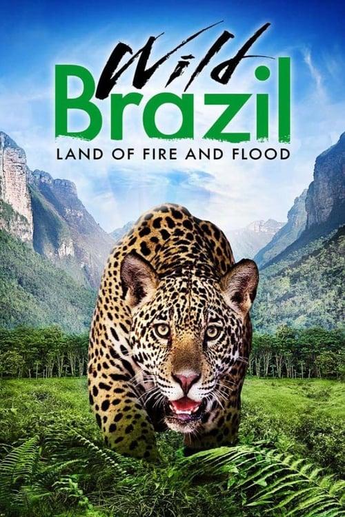 Wild Brazil (2014)
