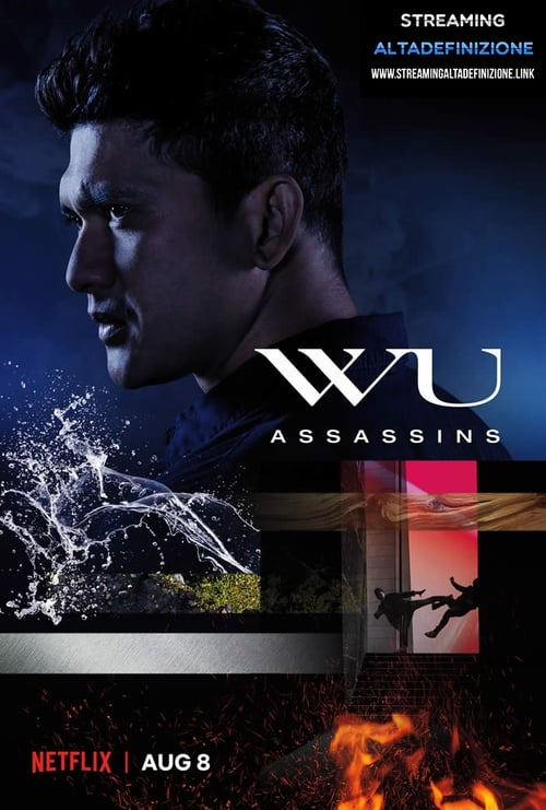 Banner of Wu Assassins