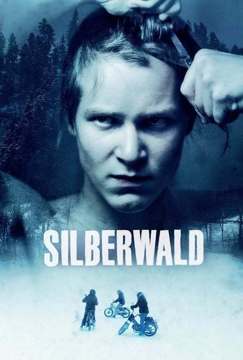 Mira La Película Silberwald Gratis