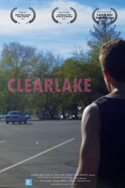 CLEARLAKE (Microfeature) The website