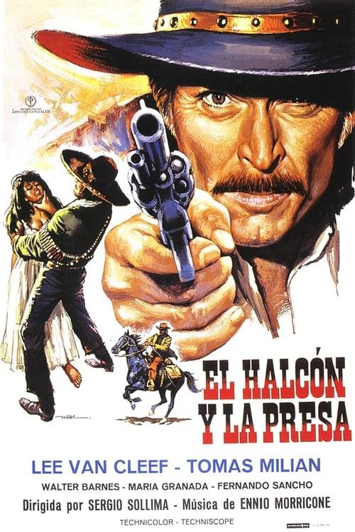 Película The Big Shot En Buena Calidad Hd 1080p