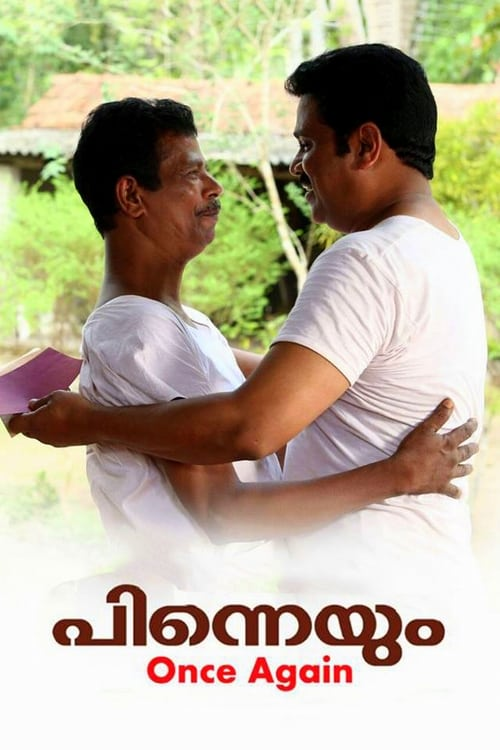 Largescale poster for പിന്നെയും