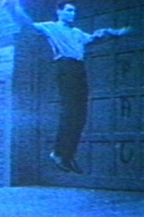 Assistir Vincent Gallo as Flying Christ Completamente Grátis