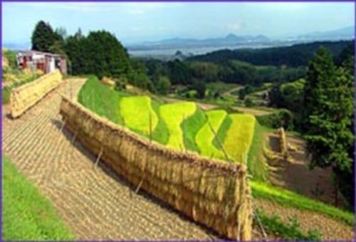 NOVA: Season 28 – Episode Japan's Secret Garden