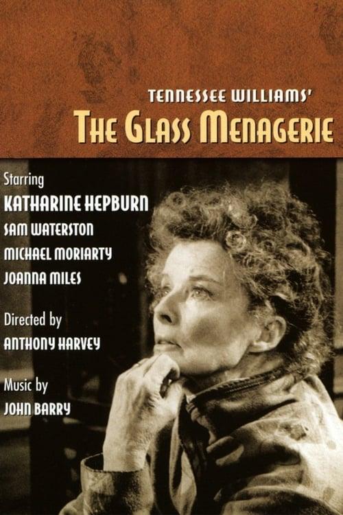 Mira La Película The Glass Menagerie En Buena Calidad Hd