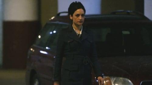 The Good Wife - Season 2 - Episode 17: Ham Sandwich