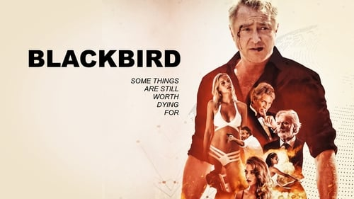 What a Blackbird cool Movie?