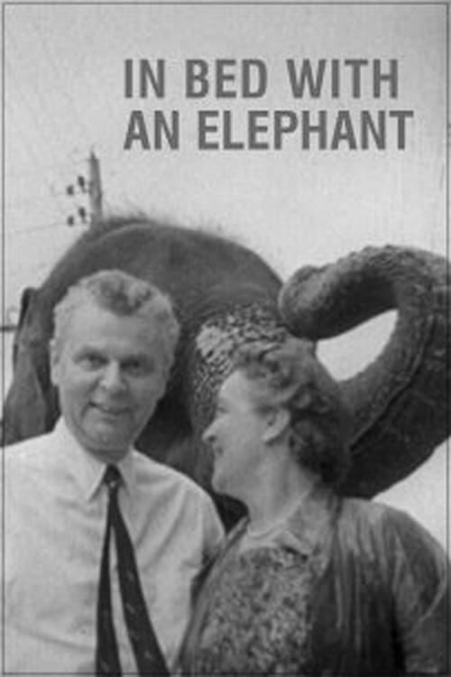 In Bed with an Elephant ( In Bed with an Elephant )