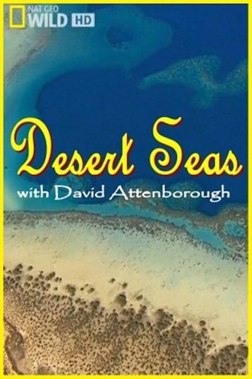 Regarde Le Film Desert Seas De Bonne Qualité