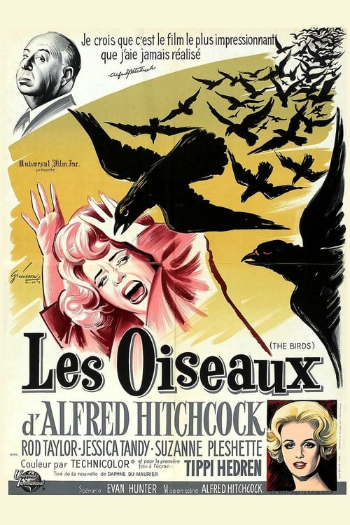 Regarder Les Oiseaux (1963) Streaming HD FR