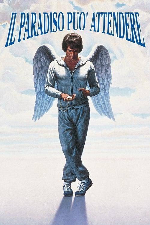 Il paradiso può attendere (1978)