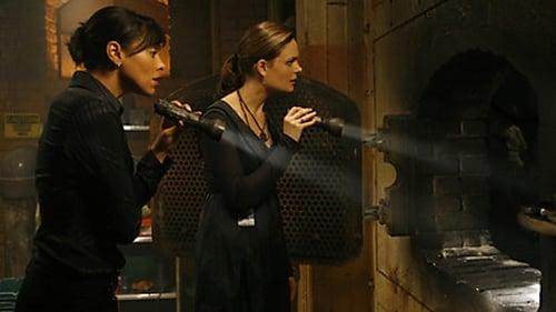 Bones: Season 3 – Episod Intern in the Incinerator