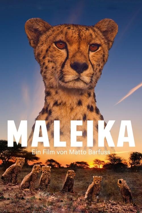 Película Maleika En Buena Calidad