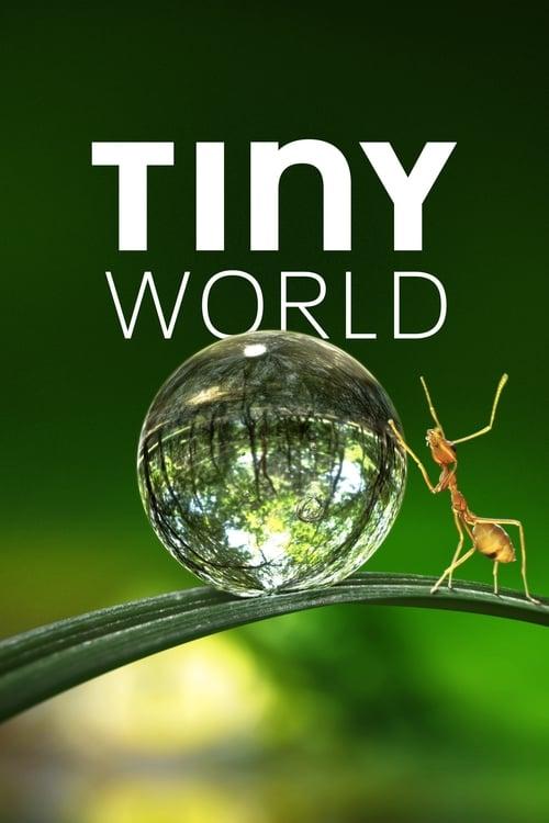 Poster von Tiny World
