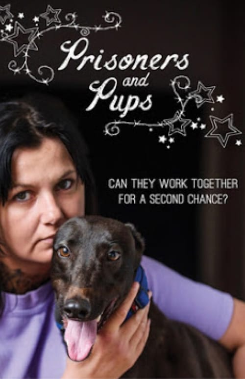 Prisoners and Pups (2017)