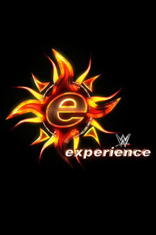 WWE Experience (2004)
